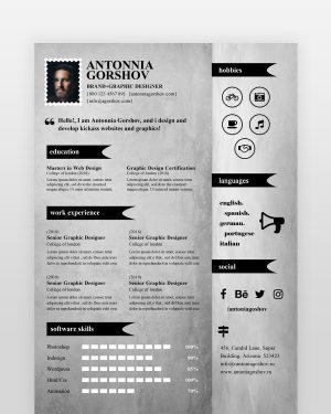 Artistic Designer Resume Template - by printableresumes.com