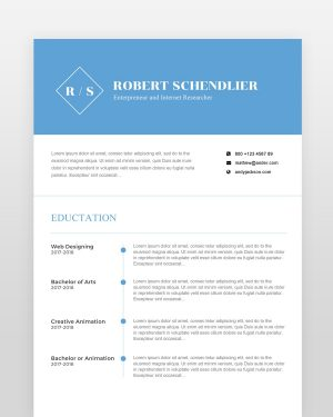 Clean Designer Resume Template (2 pages) - by printableresumes.com