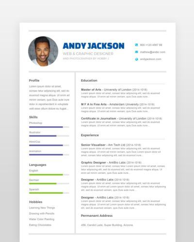 Clean and Neat Professional Resume - by printableresumes.com