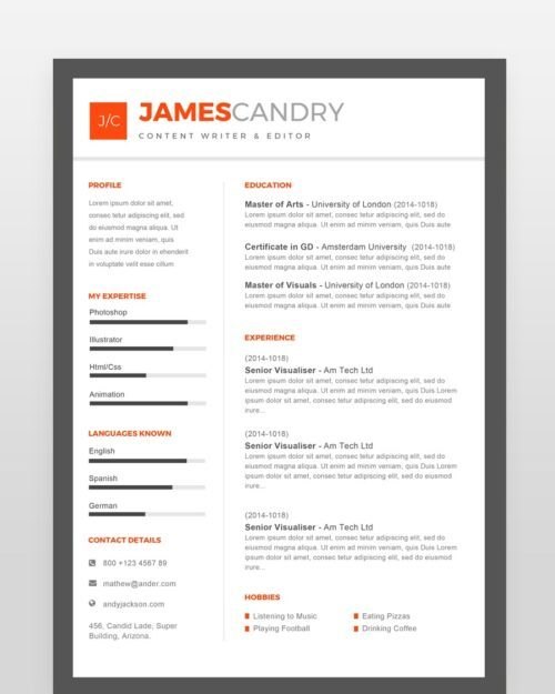 Content Writer Resume Template