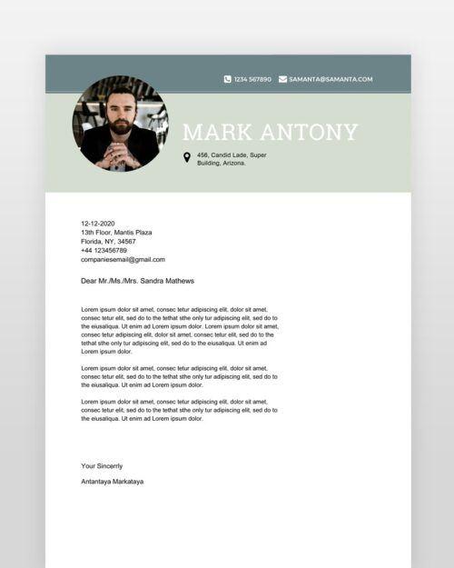 Designer-Resume-Template_cl - by printableresumes.com