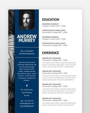 Experienced Designer Resume - by printableresumes.com