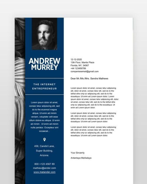 Experienced-Designer-Resume_cl - by printableresumes.com