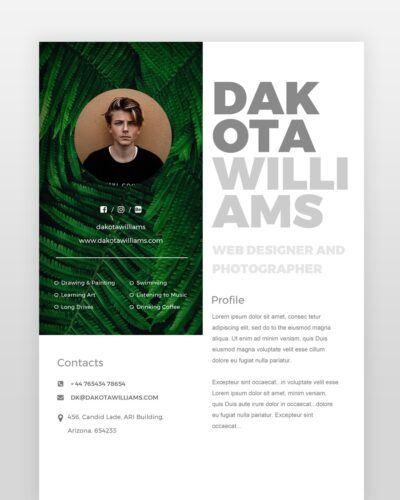 Modern Web Designer Resume - by printableresumes.com