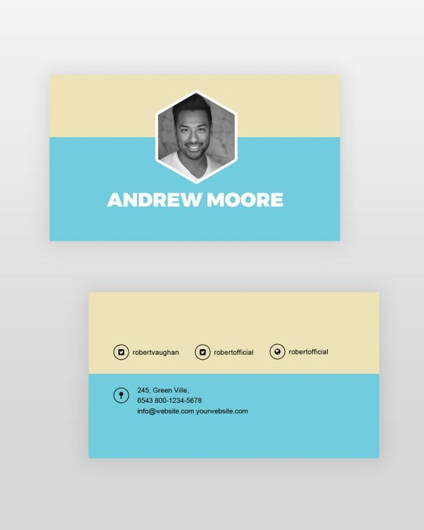 Professional-Resume-Template_bc - by printableresumes.com