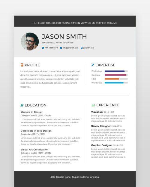 Professional Software Engineer Resume - by printableresumes.com