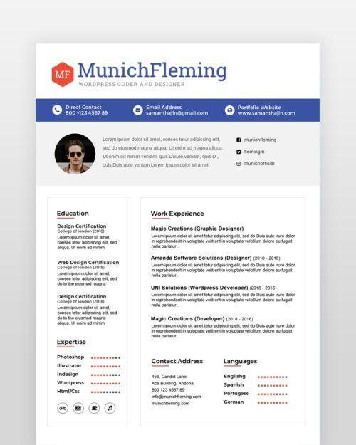Minimal Software Engineer Resume - by printableresumes.com