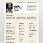Professional Graphic Designer Resume - by printableresumes.com