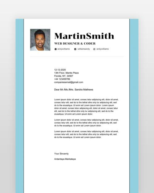 Professional-Software-Engineer-Resume - by printableresumes.com