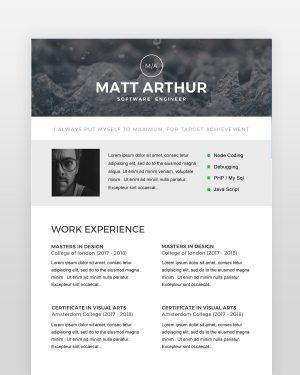 Software Engineer Resume - by printableresumes.com