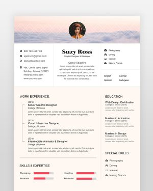Blogger Resume Template - by printableresumes.com