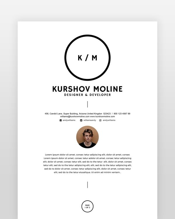 Two Page Designer Resume - by printableresumes.com