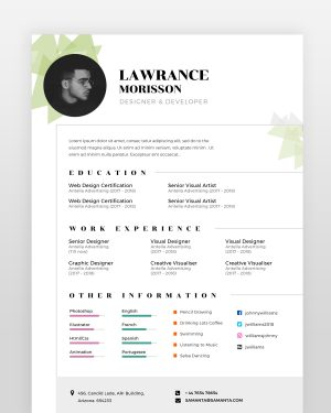 Web Designer Resume - by printableresumes.com