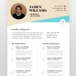 Web Designer Resume Template - by printableresumes.com